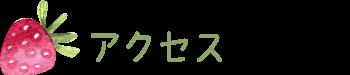 ichigo_access