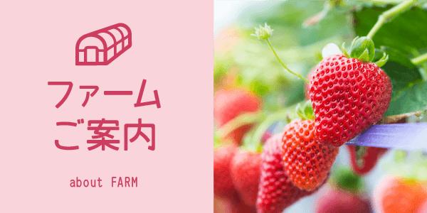 farm_m