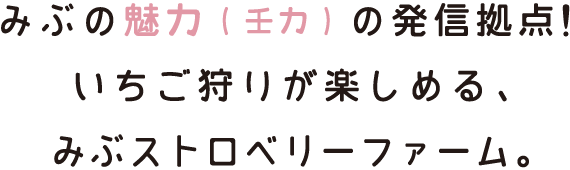 miryoku_m