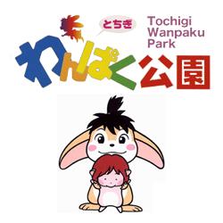 top_wanpaku